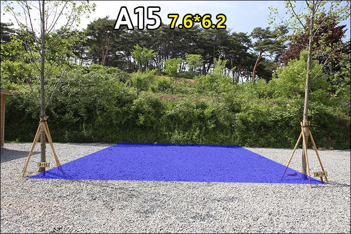 A15.jpg
