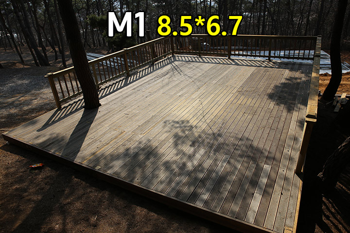 M01.jpg