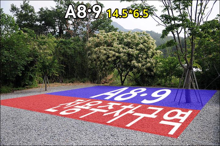 A8A9.jpg