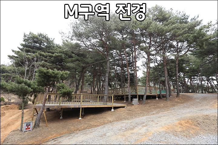 M00_3.jpg