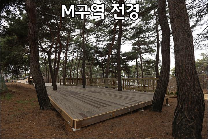 M00_5.jpg