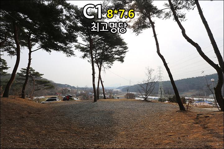 C1_1.jpg