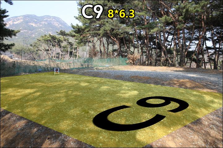 C9_1.jpg