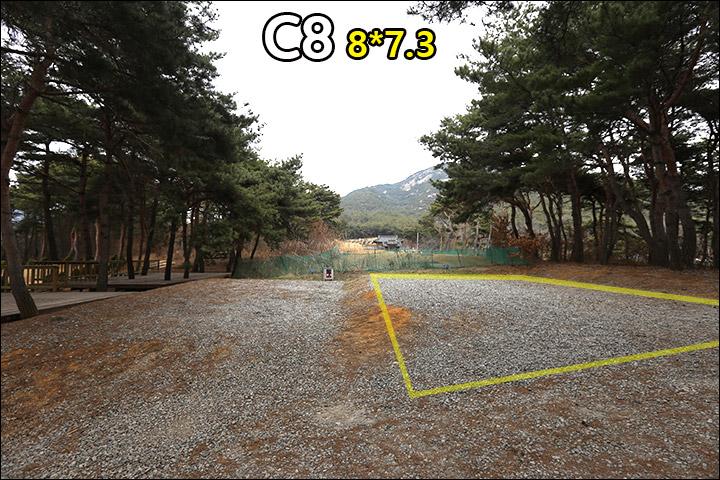 C8_2.jpg
