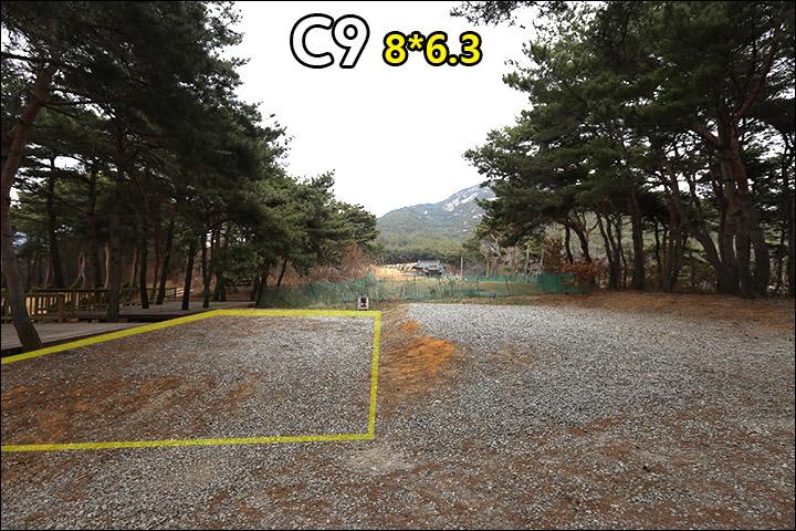 C9_2.jpg