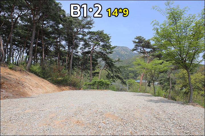 B1B2_02.jpg