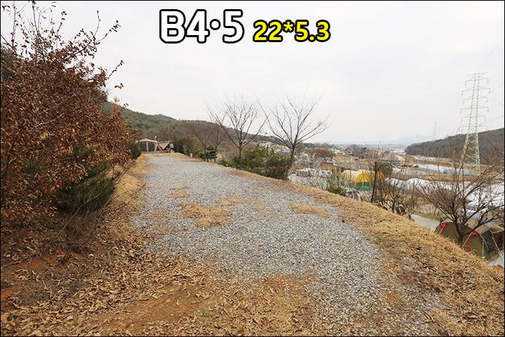 B4,5.jpg