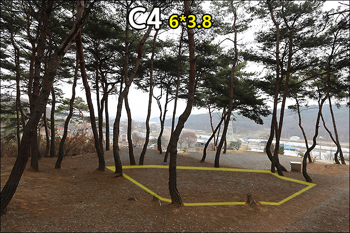 C4_1.jpg
