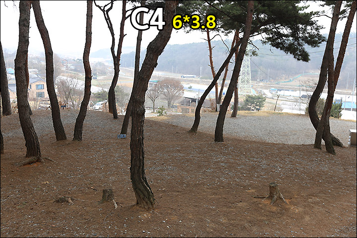 C4_2.jpg