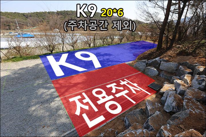 K9_01.jpg
