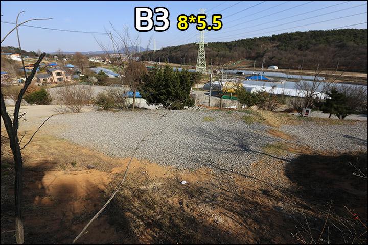 B3_2.jpg