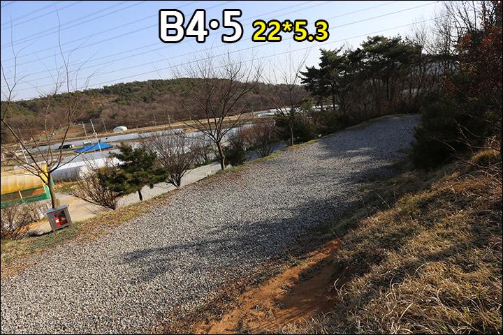 B4B5_2.jpg