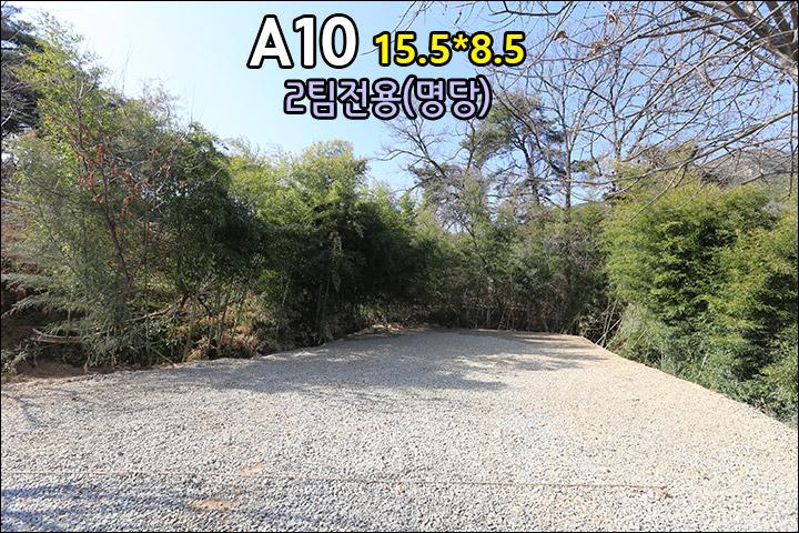 A10_3.jpg