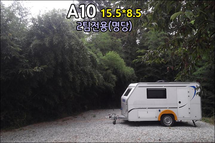 A10_4.jpg