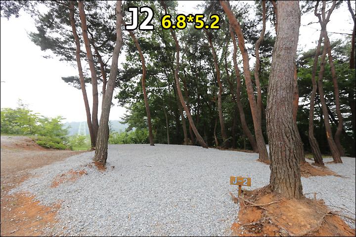 J02_2.jpg
