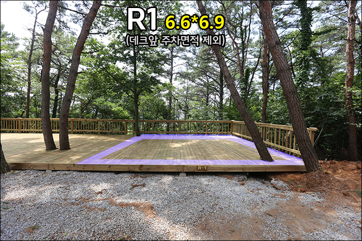 R1_1.jpg