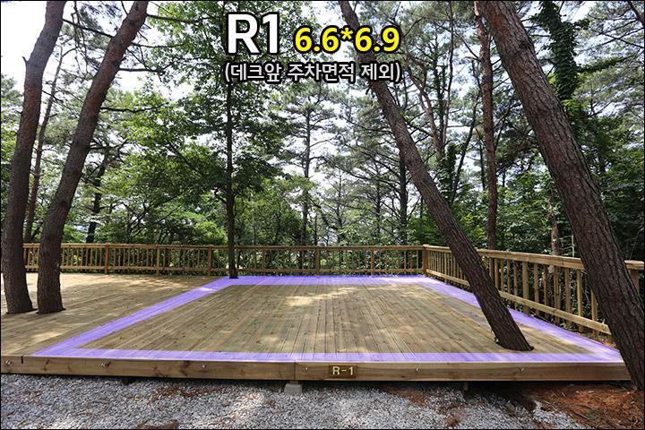R1_2.jpg