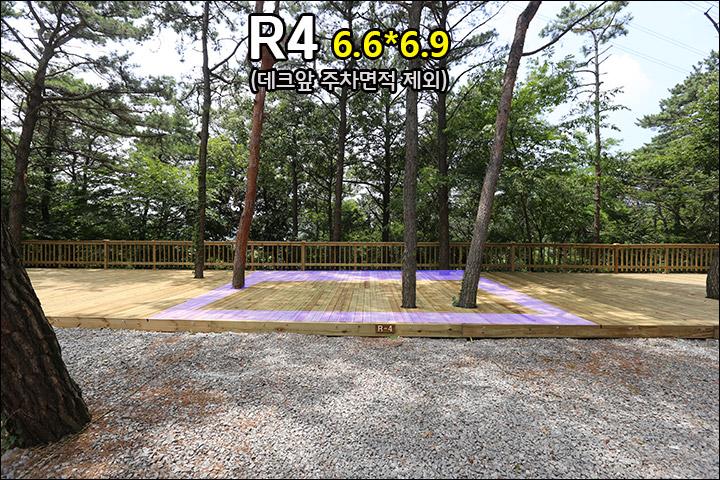 R4_1.jpg