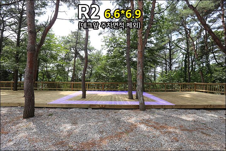 R2_1.jpg