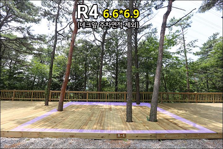 R4_2.jpg