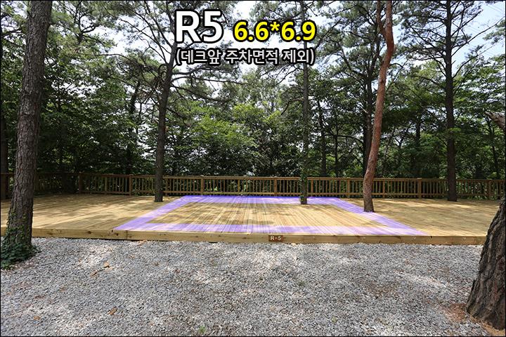 R5_1.jpg