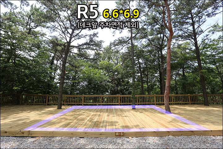 R5_2.jpg